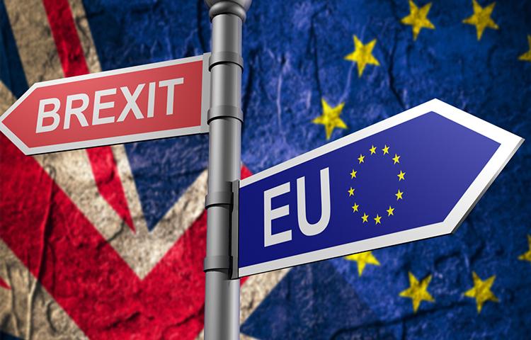 Brexit : un avenir encore plus incertain pour les pêches françaises