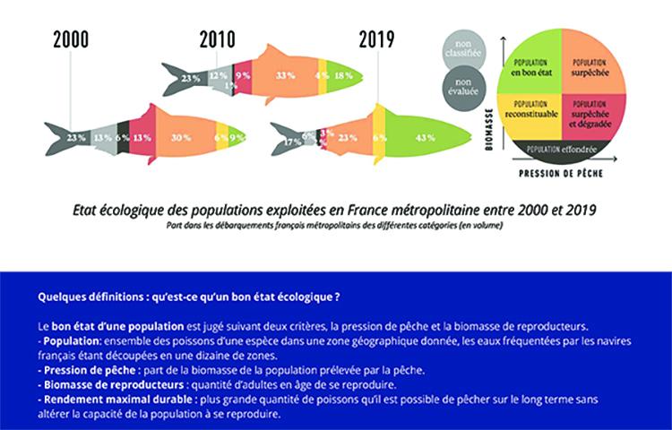 Bilan 2019 de l'état écologique des poissons pêchés en France métropolitaine