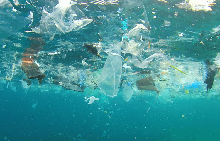 14M€ pour lutter contre la pollution plastique dans les zones sensibles