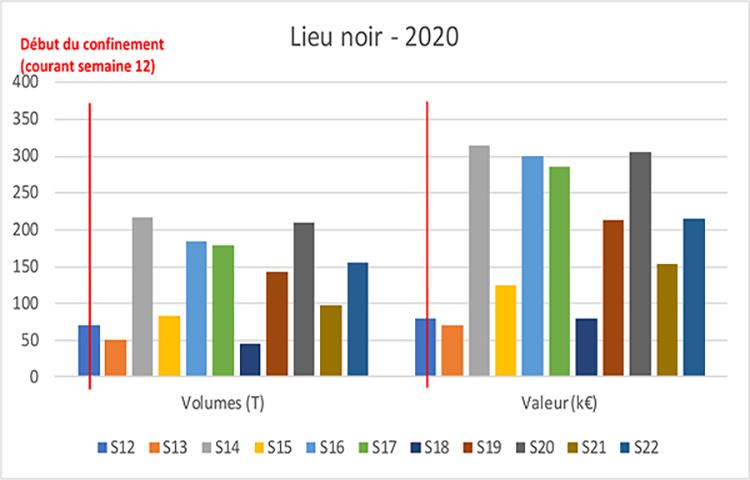 COVID 19 : impacts économiques sur le lieu noir, l'églefin, la lotte et le merlu